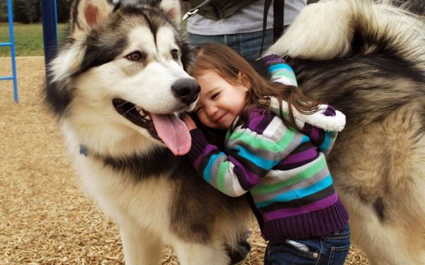 dog smile little girl 2.jpg